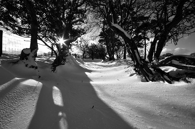 Llanfrynach winter scene in mono_Brecon Beacons_Landscape_Nigel Forster_091112017