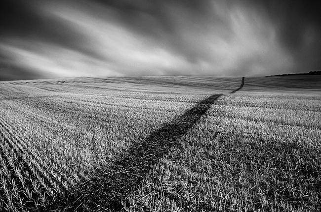 Raglan Field in monochrome. Wales_Landscape_Nigel Forster_091112017