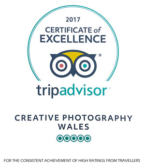 Trip Advisor Certificate of Excellence for Creative Photography Wales 2017